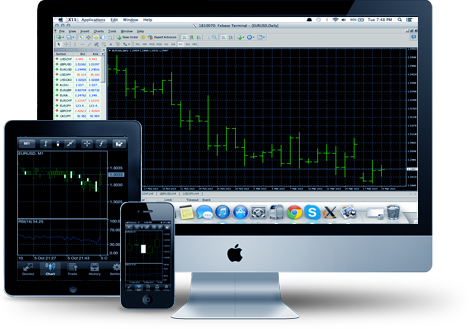 Торговые платформы (терминалы) Форекс. Какую платформу лучше выбрать для стабильной торговли на бирже?