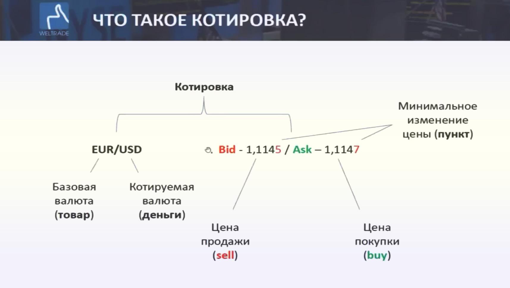 Основные понятия и терминология биржевого рынка Форекс