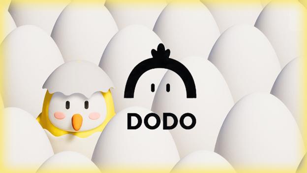 как пользоваться площпдкой Dodov2