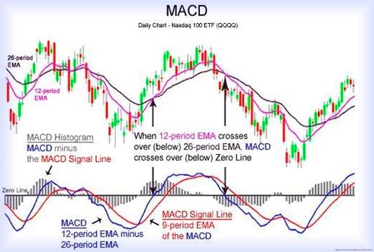 Сигнальные линии, разбираем индикатор MACD