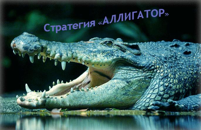 стратегия аллигатор по индикатору