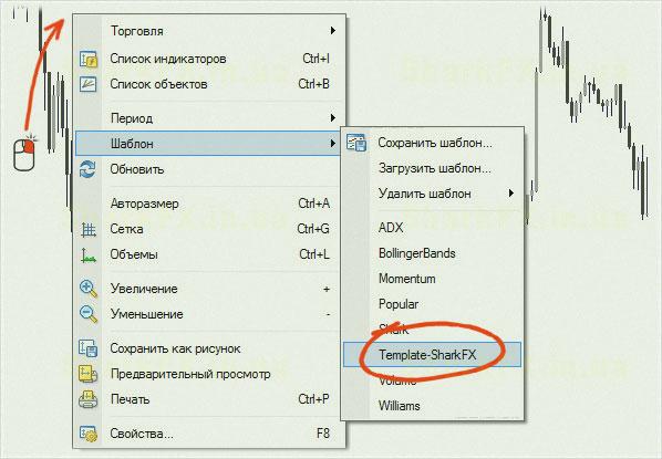 индикаторы шаблонные, терминал
