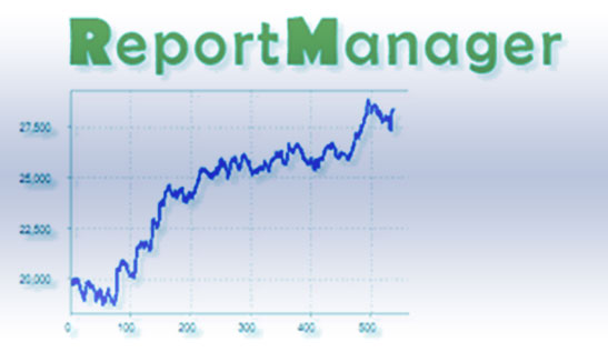 работа с Report Manager