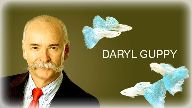 торговый метод от Daryl Guppi