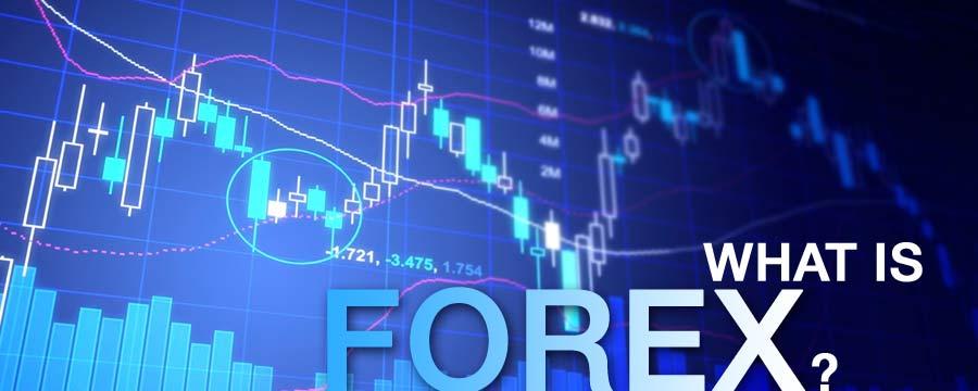 Форекс, видео уроки для начинающих в онлайн. Бесплатные обучающие видеокурсы по торговле на бирже