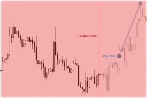 биржевые сессии и выставление ордеров