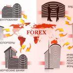 Как устроен валютный рынок Форекс? Схема работы биржи и брокерских компаний